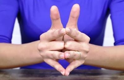 Ibu jari