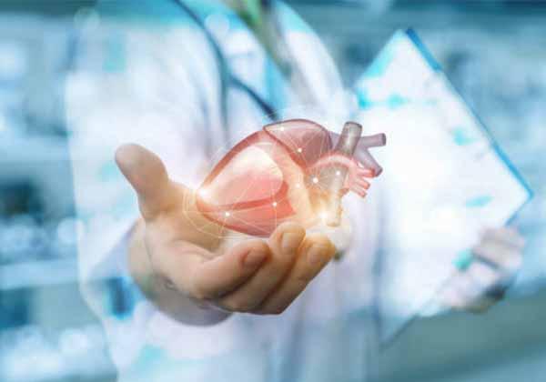 Manfaat Herbalife Untuk Menjaga Kesehatan Jantung